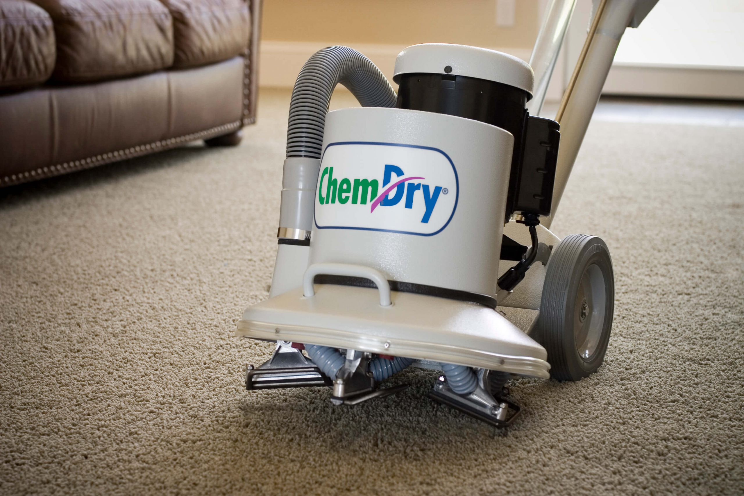 Steam Carpet Cleaning San Diego